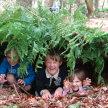 Wilsden Holiday Forest School image