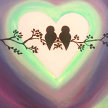"""Paint & Sip """"Birds in Love"""" at 11am $22 image"""