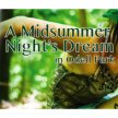 A Midsummer Night's Dream - Pay What Thou Wilt Preview image