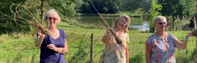 Willow Flower & Dragonfly Workshop @ Flittons