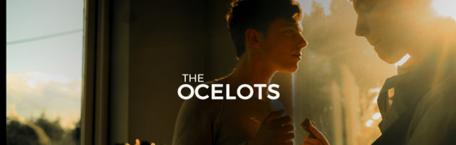 Sunday Session: The Ocelots