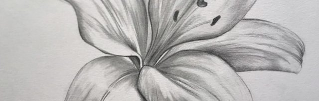 Lily Drawing Brush Party - Online