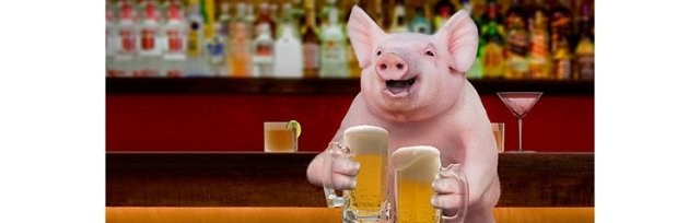 Swigs & Pigs for Sarcoma!