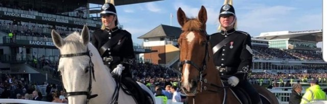 Merseyside Mounted Police Open day and Demo