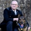 PDH Dave Wardell and PD Finn – The story behind Fabulous Finn, the brave police dog who came back from the brink. image