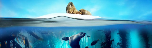 Public Talk: Science Behind the Blue Planet