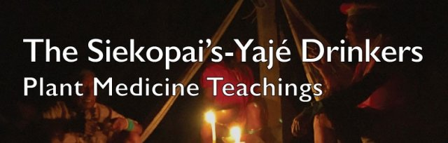 The Siekopai - Yajé Drinkers - Plant Medicine Teachings