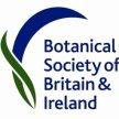 BSBI Identifying Wildflower Families Workshop image