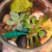 Plant & Sip! Terrarium Fun at 1:30 pm $39 image