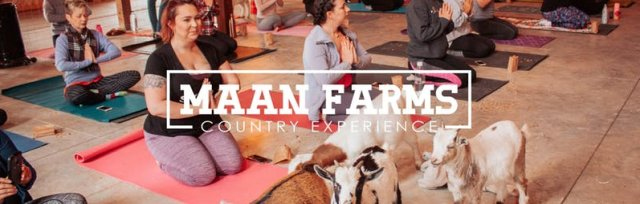 Maan Farms Goat Yoga