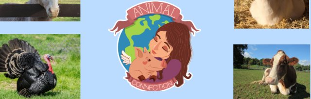 Catskill Animal Sanctuary Retreat