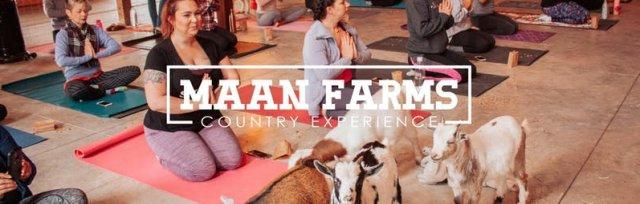 Maan Farms Goat Yoga