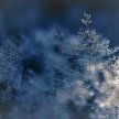Surviving Spiritual Winters image