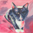 Paint & Sip! Black Cat at 3pm $35 Upland image
