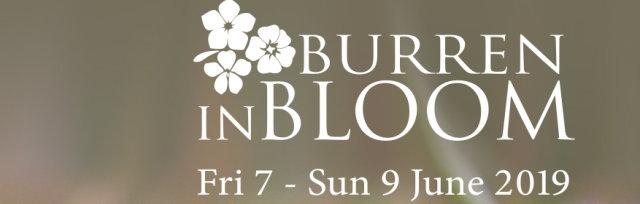Burren in Bloom 2019