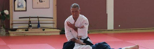 British Birankai Aikido  Summer School 2020