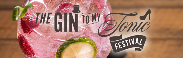 The Gin To My Tonic Festival Newcastle 2021