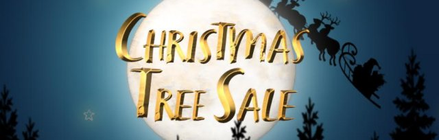 Christmas Tree Sale — to support Ashley Down Primary School