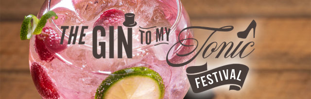 The Gin To My Tonic Festival Winchester 2020