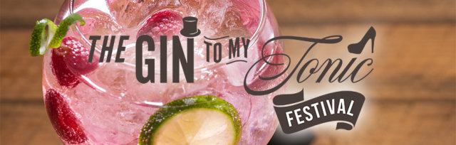 The Gin To My Tonic Festival Swindon 2019