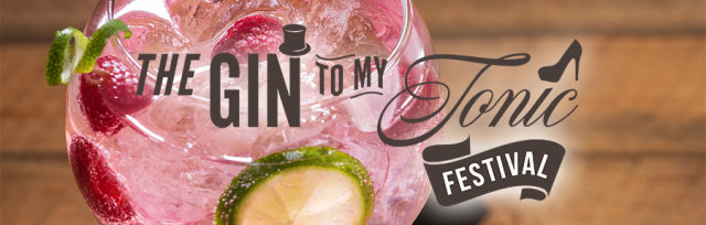 The Gin To My Tonic Festival Cheltenham 2019