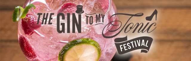 The Gin To My Tonic Festival Newcastle 2019