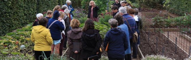 Small garden, big ideas – designing and planting the small garden with Hester Forde & Annie Guilfoyle