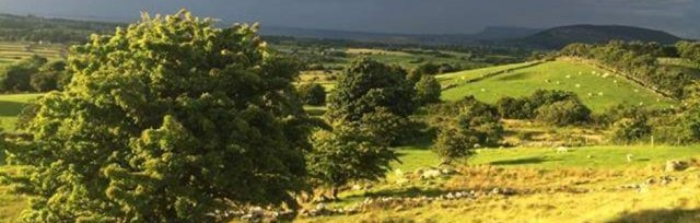 Farming For Nature Walk with Bridget Murphy - August (Co.Sligo)