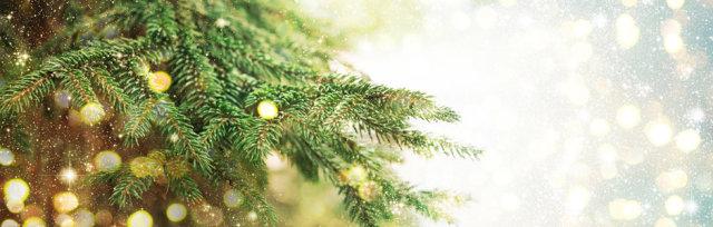 Friends of Belham Christmas Trees