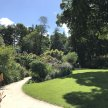 Guided Garden walk at Milntown image