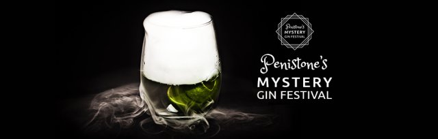 Mystery Gin Festival - Penistone (Friday evening)