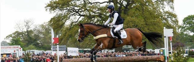 Eventing Focus Educational Training and CPD Day