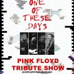 One of these Days (Wall of Floyd)  - Pink Floyd Tribute Show image