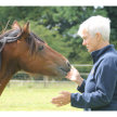 In Tune With Your Horse (Part 1) with Sue Newport from Asentia Healing with Animals image