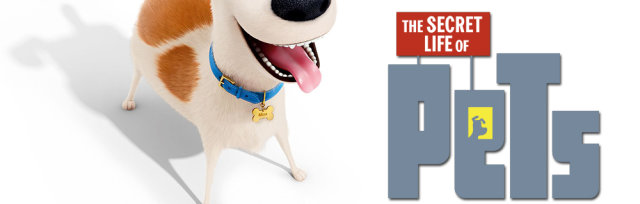 The Secret Life Of Pets at Leopardstown Racecourse