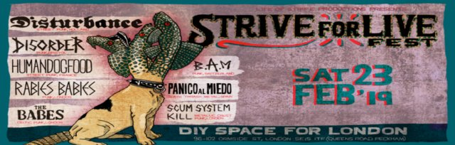 Strife for Live Fest 2019: Disturbance (NL), Human DogFood (FR), BAM (CH), DISORDER (UK) PANICO AL MIEDO(SP)