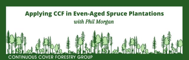 Applying CCF in Even-aged Spruce Plantations - Webinar with Phil Morgan (Sustainable Forest Management and SelectFor)