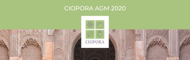 CIOPORA AGM 2020 in Marrakesh (Members)