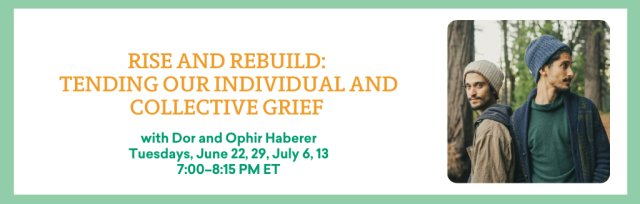 Rise and Rebuild: Tending our Individual and Collective Grief