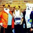Pete Green | Mike Garry | Kate Fox | The Mixtape Tour with Nick Makoha and Roger Robinson image