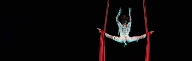 Pitch'd Gala Cabaret - Pitch'd Circus Arts Festival: Evening Show Times 8pm