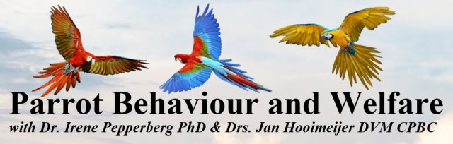 Buy tickets for Parrot Behaviour and Welfare Seminar at Veterinary