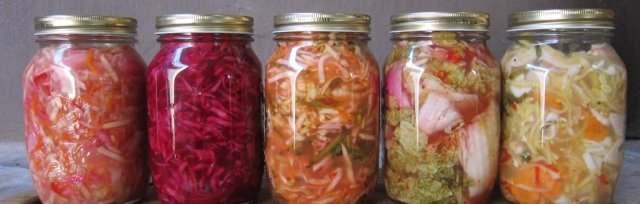 Fermentation Basics: Lecture & Demonstration (early session)