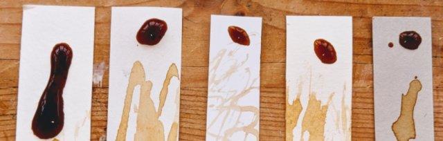 Autumnal botanical ink making workshop [Ref#473]
