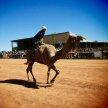 Boulia Camel Races 2019 image