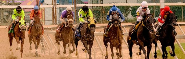 MHC's VIP Day at the Races - CANCELLED