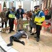 Stockholm Detective Day image