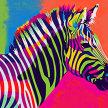 artbird party ONLINE   Zebra Pop Art image