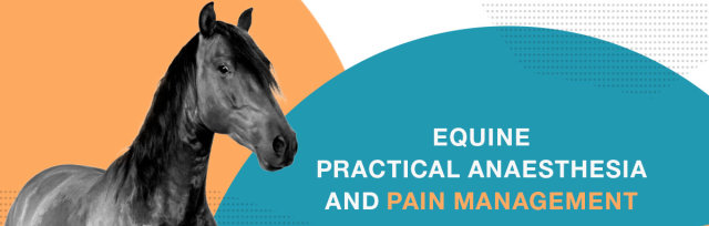 Equine Practical Anaesthesia and Pain Management