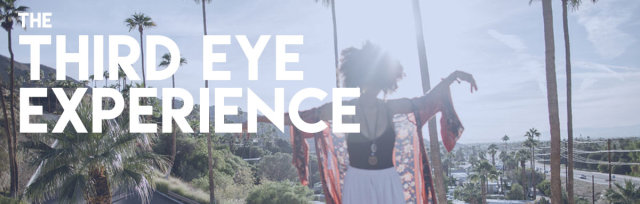 The Third Eye Experience: Meet Your Spirit Guides